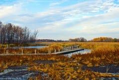 Schizzi di autunno sulla palude di Horicon, Wisconsin Fotografia Stock Libera da Diritti