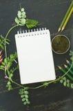 Schizzi il libro, il muschio e le matite di colore nei toni verdi Fotografia Stock