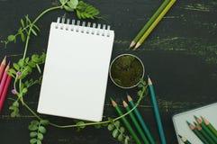 Schizzi il libro, il muschio e le matite di colore nei toni verdi Immagine Stock