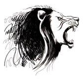 Schizzo capo del leone Fotografia Stock Libera da Diritti