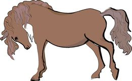 Schizzo del cavallo Immagine Stock