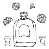Schizzo del cognac o di Brandy Bottle e del colpo di vetro del whiskey Con l'agrume Illustrazione disegnata a mano di vettore di  Fotografie Stock