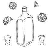 Schizzo del cognac o di Brandy Bottle e del colpo di vetro del whiskey Con l'agrume Illustrazione disegnata a mano di vettore di  Fotografia Stock Libera da Diritti