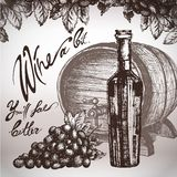 Schizzo del vino ed illustrazione dell'annata Fotografia Stock
