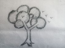 Schizzo dell'albero con gli uccelli fotografia stock libera da diritti