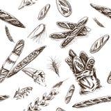 Schizzo dell'illustrazione di vettore - forno pagnotta, baguette, pane Fotografie Stock