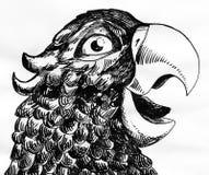 Schizzo dell'inchiostro del pappagallo Fotografia Stock
