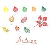 Schizzo della foglia di autunno, scarabocchio, disegno della mano, illustrazione di vettore Fotografie Stock Libere da Diritti