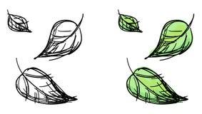 Schizzo di vettore delle foglie cadenti Fotografia Stock