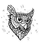 Schizzo di vettore di Owl Head Fotografia Stock