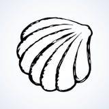 Schizzo di vettore Shell illustrazione vettoriale