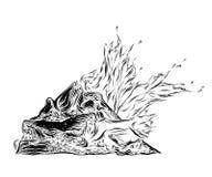 Schizzo disegnato a mano del falò nel nero isolato su fondo bianco Disegno d'annata dettagliato di stile Illustrazione di vettore illustrazione vettoriale