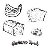 Schizzo disegnato a mano del pane di banana illustrazione vettoriale