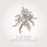 Schizzo disegnato a mano del vischio di Natale Immagini Stock