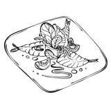 Schizzo disegnato a mano di insalata fresca con i verdi, gamberetti, pomodoro Fotografia Stock