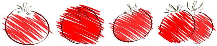 Schizzo isolato del pomodoro Immagini Stock Libere da Diritti