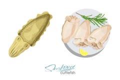 Schizzo isolato frutti di mare della seppia Illustrazione di un piatto della seppia con il limone ed i rosmarini su un piatto sep Fotografie Stock