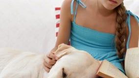 Schläfriger Hund, der Kopf in Eigentümer ` s Schoss legt stock video