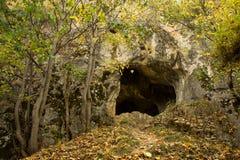 Schläger-Höhle Stockbilder