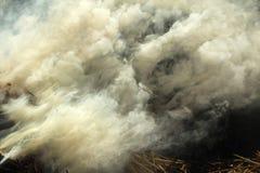 Schlägt scharfen Rauch des brennenden Heuhintergrundes mit einer Keule Stockbild