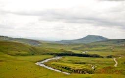 Schlängelnder Fluss Lizenzfreies Stockbild