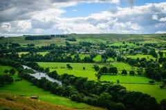 Schlängelnder Fluss, der seine Weise durch üppiges grünes ländliches macht Stockbild