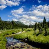 Schlängelnder Nebenfluss in der Sierra Nevadas Lizenzfreie Stockfotografie