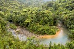Schlängelnder Nebenfluss durch bewaldete Hügel von Neuseeland Lizenzfreie Stockfotos