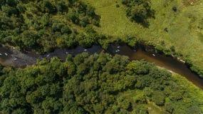 SCHLÜRFEN Sie unidentifizierbaren Leutepaddeleinstieg auf einem ruhigen Fluss während des Sommers Stockfoto
