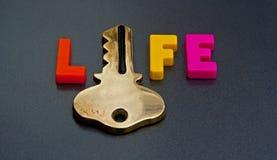 Schlüssel zum Leben Stockbilder