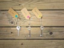 Schlüssel zum Lebenkonzept Lizenzfreie Stockbilder
