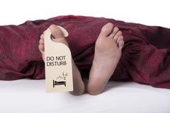 Schlafen - stören Sie nicht Stockbilder