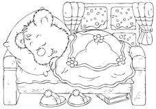 Schlafenbär Lizenzfreie Stockfotografie