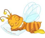 Schlafenbiene stock abbildung