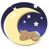 Schlafender Teddybärjunge Lizenzfreie Stockbilder
