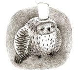 Schlafendes großes Grey Owl In ein Zylinder Lizenzfreie Stockfotos