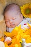Schlafendes neugeborenes Mädchen Stockfotos