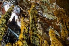 Schlafengesicht in der Höhle Stockfotografie