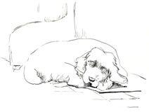 Schlafenhund stock abbildung