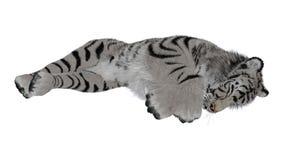 Schlafentiger Stockfoto