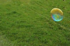 Schlagblase der Blase auf Wiese Stockbild