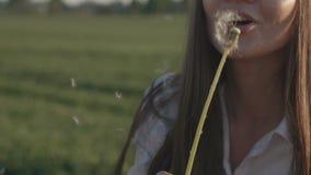 Schlaglöwenzahn des schönen Mädchens stock video