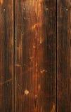 Schlagnagel in der Planke Stockbilder