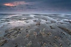 Schlamm in niedriges tideon Nordsee Stockbilder