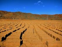 Schlamm-Ziegelsteine in Tibet lizenzfreie stockfotografie