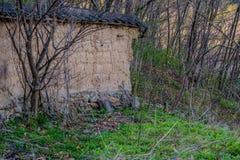 Schlammbacksteinmauer mit schwarzem Ziegeldach in der Waldfläche Stockfotografie
