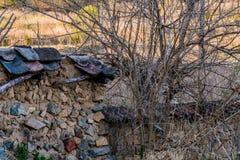 Schlammbacksteinmauer mit schwarzem Ziegeldach in der Waldfläche Lizenzfreie Stockfotos