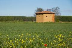 Schlammhütte auf dem Gebiet im Frühjahr Lizenzfreies Stockfoto