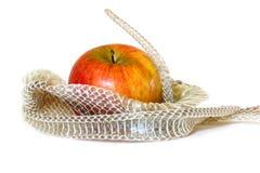 Schlange-Haut und Apple Stockfoto
