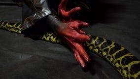 Schlange und blutige Hände stock video footage